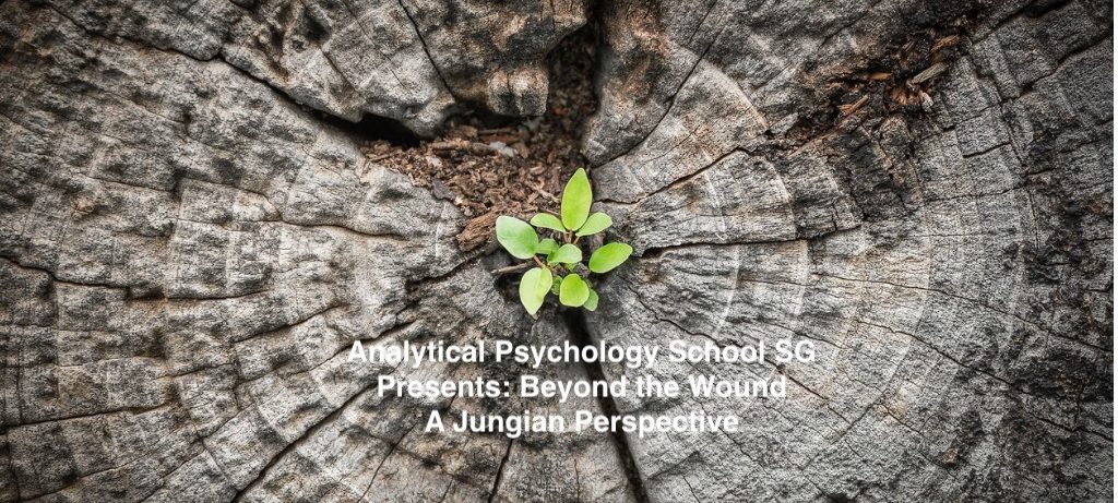 Analytical Psychology School SG