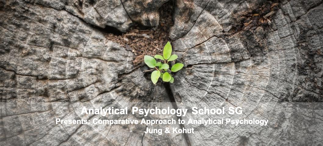 Analytical Psychology School SG